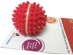 Super Dog Spike Ball and rope