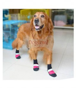 Waterproof-Dog-Boots-1